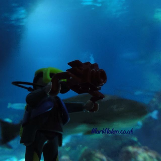 Hey don't sneak up on me! #Playmobil #shark #diver #aquarium #barcelona