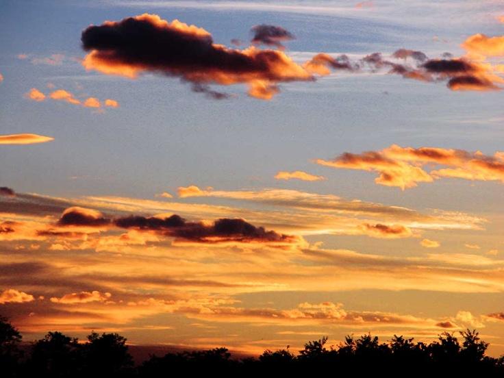 gold sky