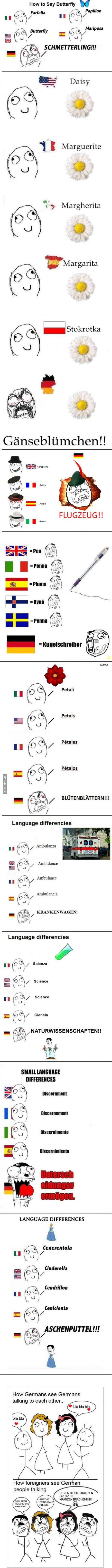 I've always found German to be a beautiful language... but this is how my friends think... lol, quite a difference...