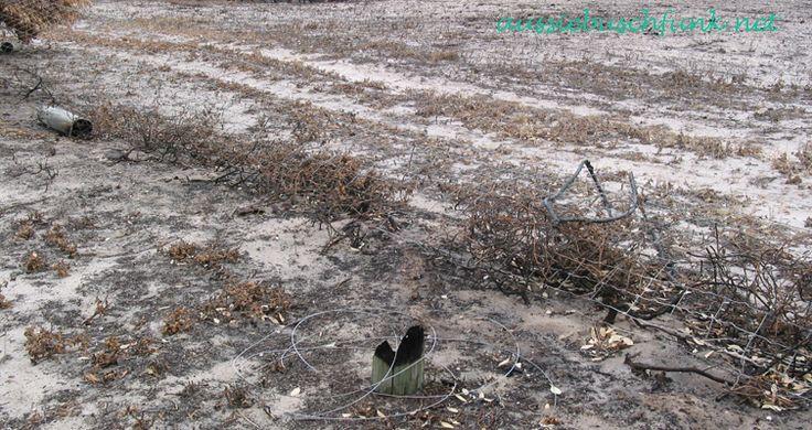 Aussie Buschfunk braucht deine Hilfe beim Wiederaufbau nach dem schrecklichen Esperance Buschfeuer! Eine kleine Spende würde uns sehr weiterhelfen!