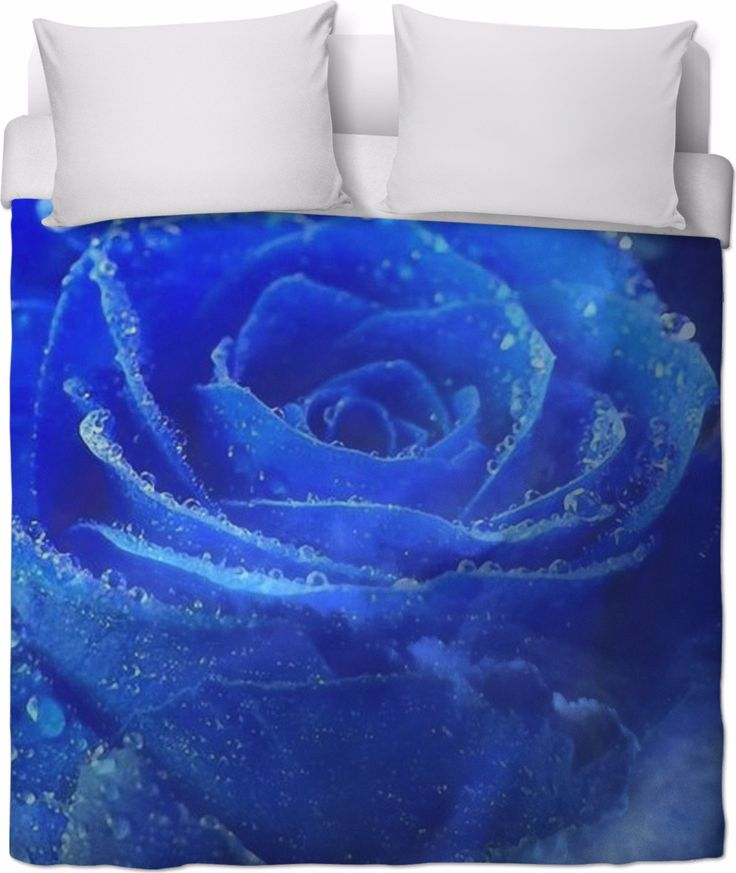 Check out my new product https://www.rageon.com/products/blue-rose-and-sky-duvet-cover?aff=BWeX on RageOn!