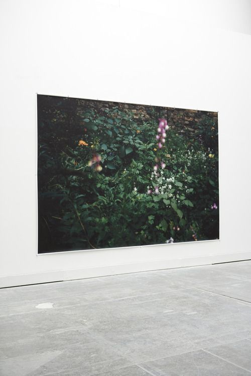 Big picture - Wolfgang Tillmans