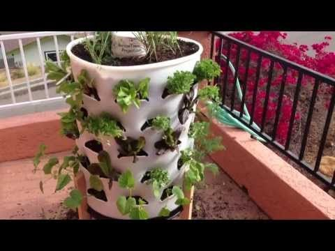 How to Set Up a Vertical Garden Tower and Grow Your Own Vegetables (PART...