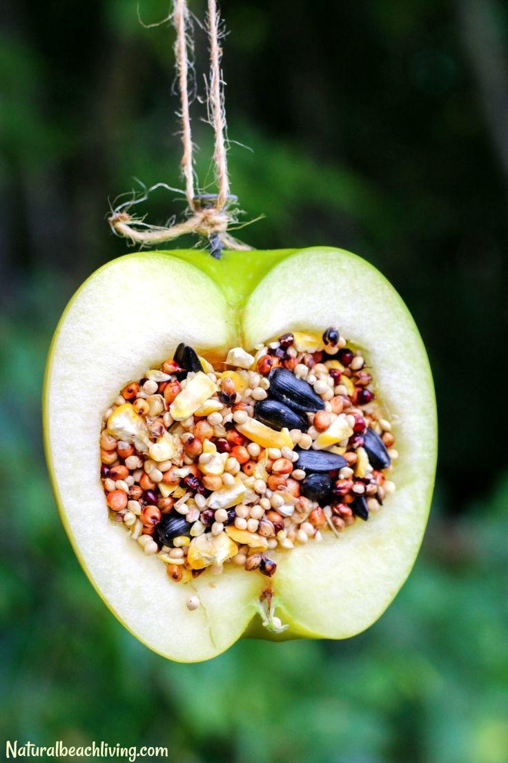 Best 25 bird feeder craft ideas on pinterest homemade for Homemade bird feeders