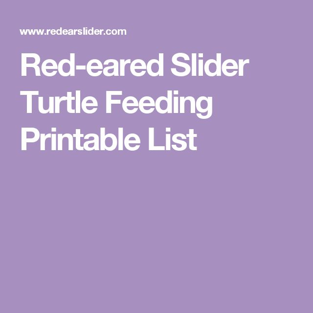 Red-eared Slider Turtle Feeding Printable List                                                                                                                                                                                 More