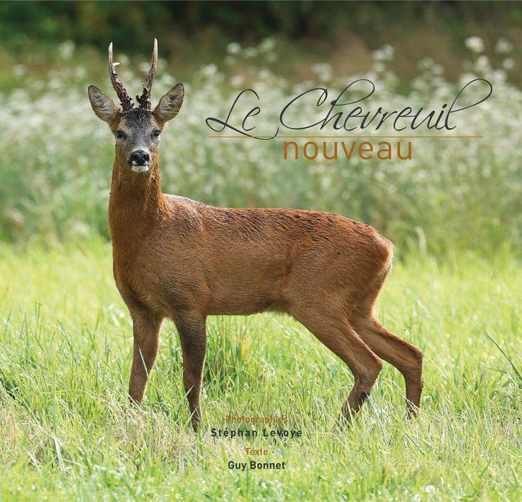 Les 25 meilleures id es de la cat gorie chevreuil sur - Cuisiner epaule de chevreuil ...