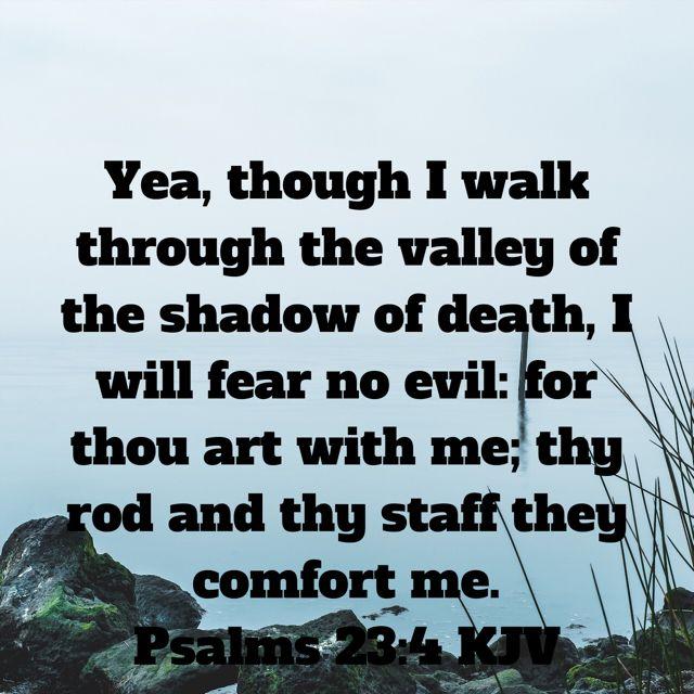 Pin By Olga Sanchez On My Best Stuff Bible Apps Psalms Evil