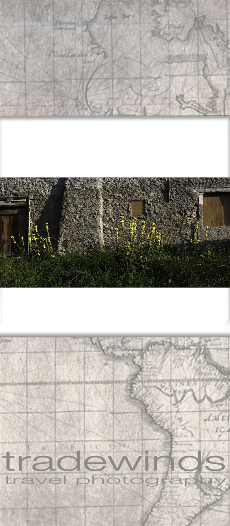 Yellow flowers grow along old stone building.