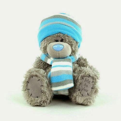 Modrej zimni