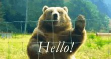 Hi Hello GIF - Hi Hello Wave GIFs