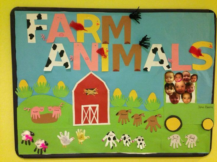 Farm animals bulletin board
