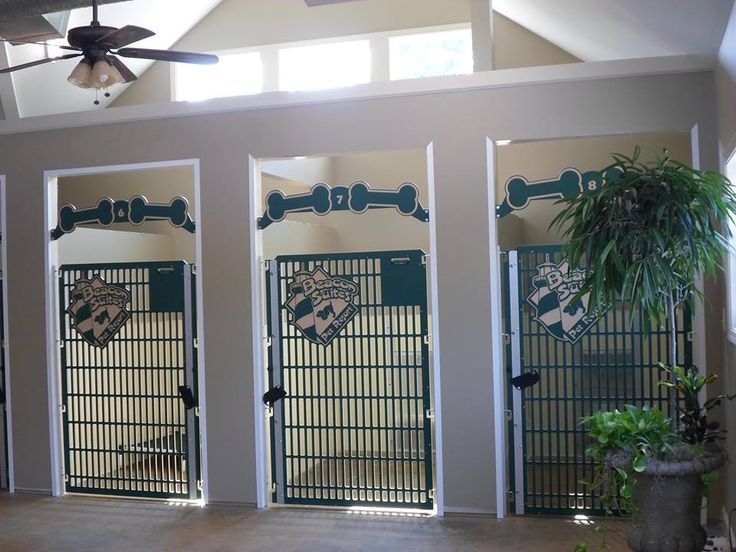 These stylish dog kennel gates are installed on built-in kennel/suites!  An open design allows for airflow and light into the suites.