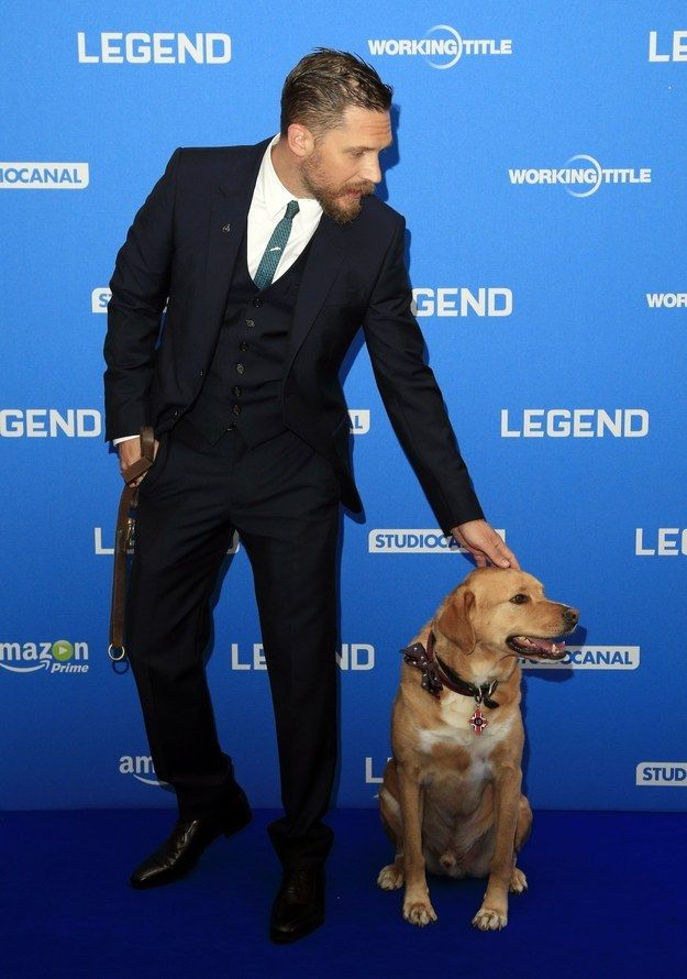 And here they both are posing in synch.   Tom Hardy Took His Dog To A Movie Premiere And It's Pretty Hard To Deal With