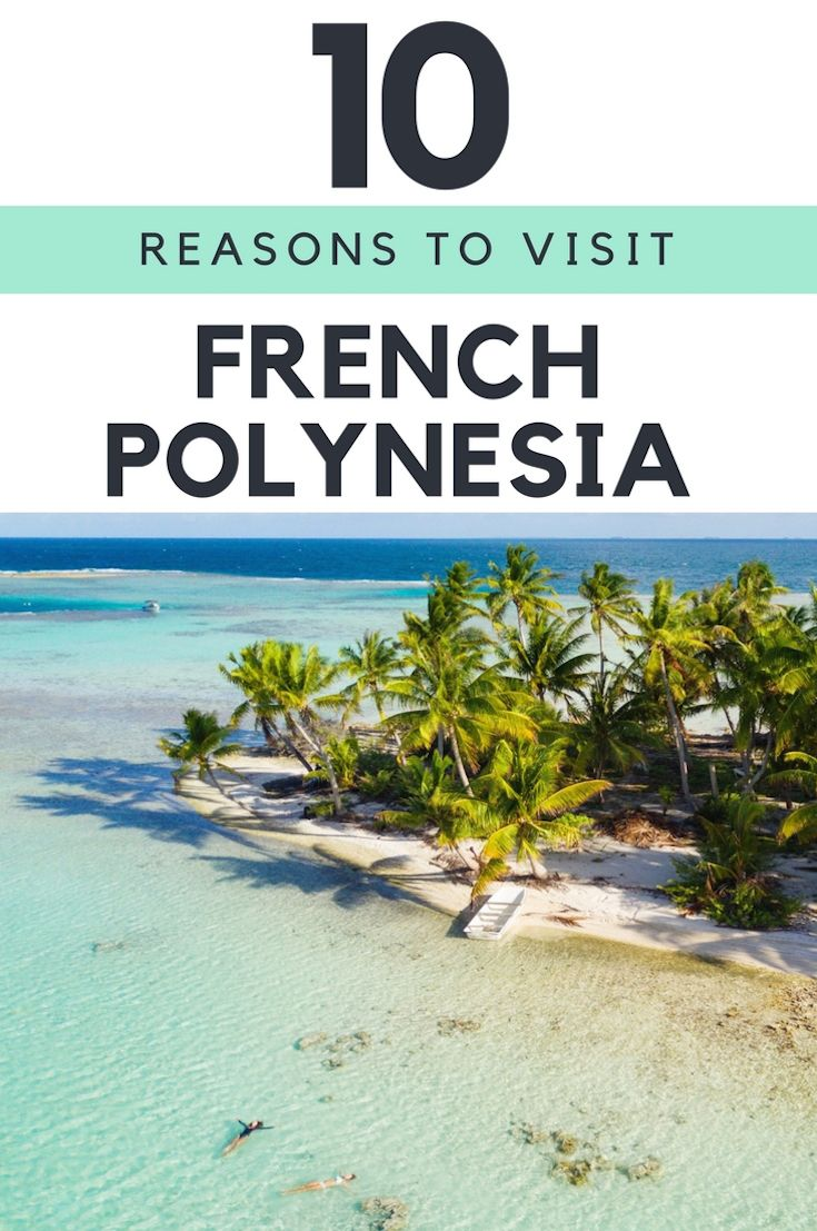 One of my new favorite tropical destinations, French Polynesia, is a must-see. With diverse marine life, some of the world's best diving, incredible natural beauty, and a heady vanilla scent that follows you wherever you go, this is a place that you've never seen the likes of. Ready for a dream tropical escape? Here are ten reasons to visit French Polynesia!