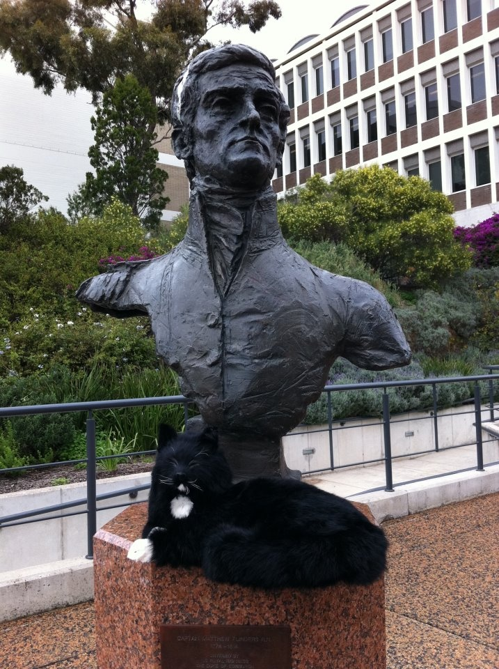 Did you know Matthew Flinders had a feline companion who helped him map Australia? Introducing, Trim!   Trim joined Flinders on his voyages, proving to be a creature of great loyalty, fun and stamina.    Trim has been spotted relaxing around the Flinders University campus… Visit our page each Friday to learn a new fun fact about Trim and see if you can guess where on campus he is! — at Flinders University.