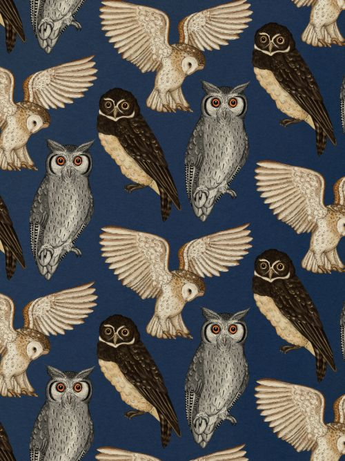 Owls on a blue ground. No info on this. It makes me think of House of Hackney in the colouring and styling, but it likely isn't.