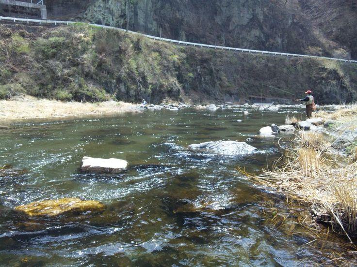 神流川C&R区間 2011,4,16  こーちゃんと上野村の神流川C&R区間に行ってきました。途中、風が強くなったりしましたが、まずまずのヤマメが釣れました。やはりC&R区間は魚影が濃いです。  帰りにららん藤岡に寄って、炙りチャーシュー丼・塩ラーメンセットを食べましたが、また...