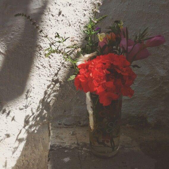 #flowers#summer#village#Greece