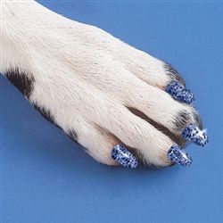 Soft Claws Nail Caps for dogs -  Available in MetroPAWlitan Pet Supply inside our Adoption Centers in Merriam, KS and Independence, MO!