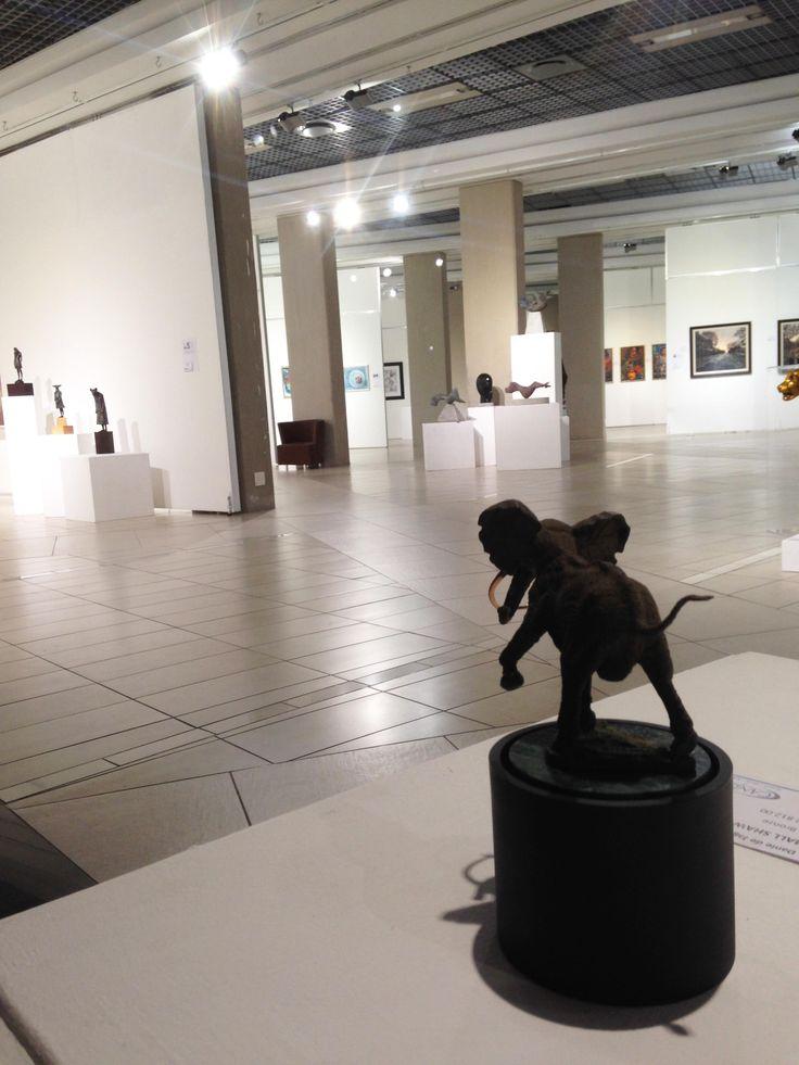 Unisa Art Gallery - CANSA Art Exhibition - Artworks by Danie de Jager - Photograph by Megan Erasmus