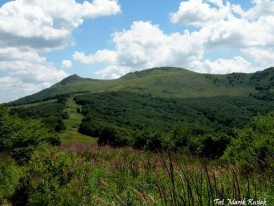 Bieszczady in the summer