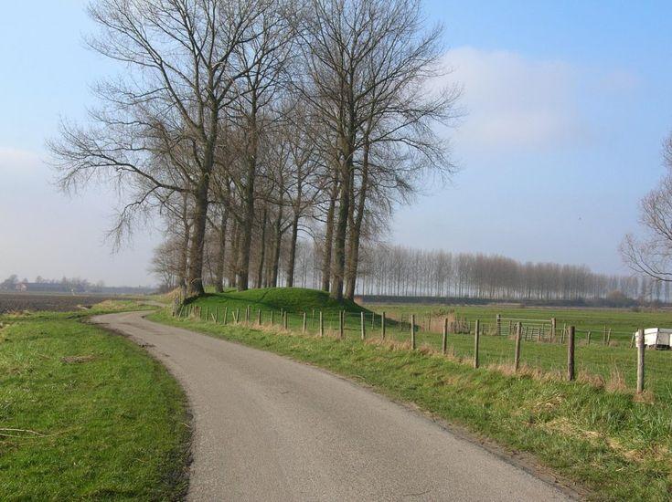 in de polder van zuidbeveland