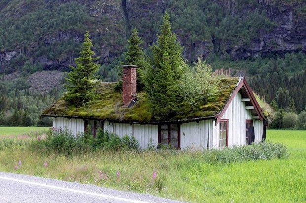 O jardim subiu no telhado - Casa Vogue | Arquitetura