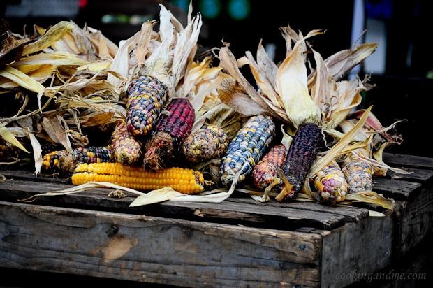 love thisHarvest Thyme, Fall Decor, Autumn Indian, Indian Corn, Autumn Acorn Oak, Fall Harvest, Colors Corn, Autumn Serenity, Harvest Blessed