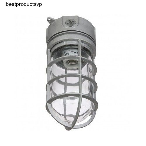 #Ebay #Outdoor #Industrial #Flush #Mount #Light #Fixture #Ceiling #Exterior #Indoor #Metal #Cage #Sunlite #Traditional