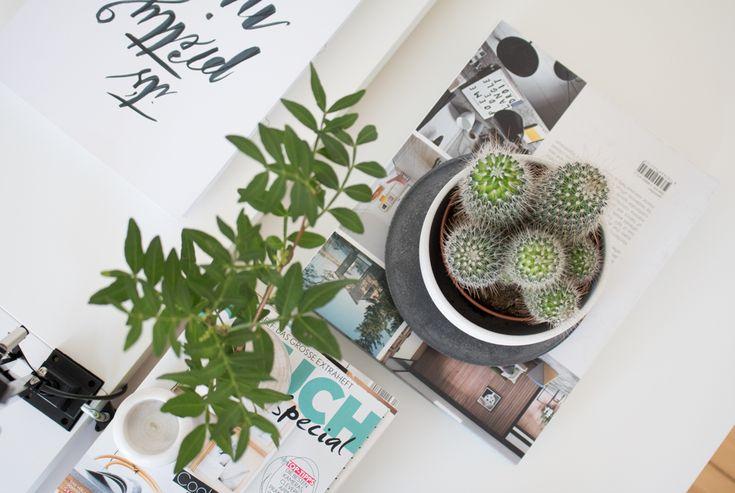 green-home-office-berlin-blogger-9