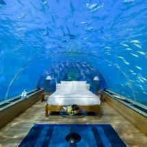 I don't know if I could actually sleep.underwater hotel , rangali island