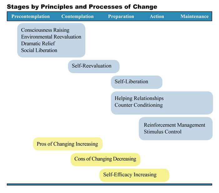 Principles and Processes of Change