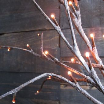 These give your room a natural feel while also adding a little twinkle!
