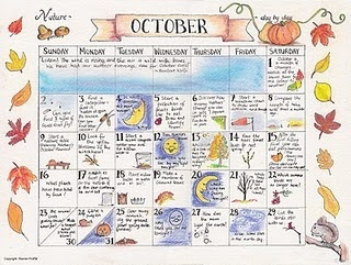 Free, downloadable nature calendar in colour. #calendar #nature