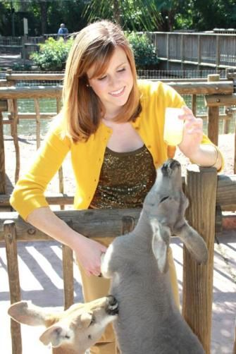 You can bottlefeed a kangaroo at Busch Gardens Tampa!