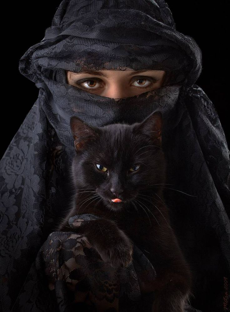 ведьма с кошкой фото