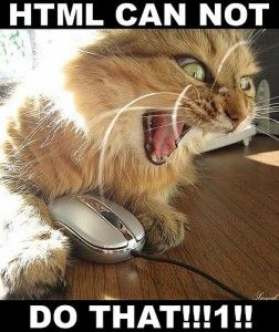HTML cannot do that!: Laughing, Geek Humor, Funny Animal Pics, Videos Games, Funny Cat, Comic Books, Pc Games, World Of Warcraft, Computers Humor