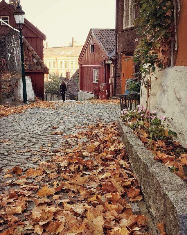 Fall at Damstredet,Oslo
