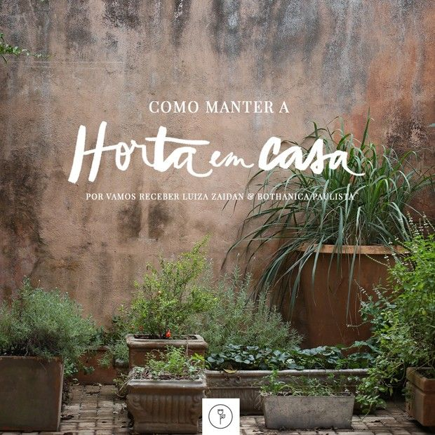 Como manter e cuidar da horta (Foto:  )