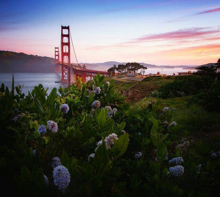Golden Gate Bridge by Vincent James Photography