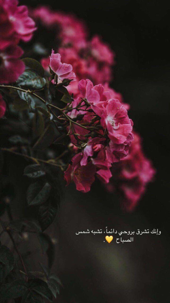 سناب سناب تصوير تصوير سنابات سنابات اقتباسات اقتباسات قهوة قهوة قهوه قهوه صباح صباح Love Quotes Wallpaper Medical Quotes Arabic Love Quotes