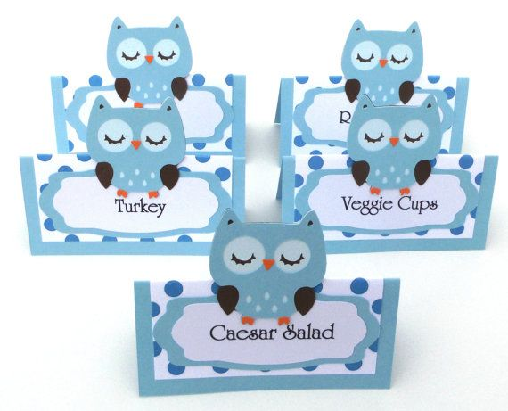 5 Owl Themed Light Blue Tent Style Food Table Label's / Name Cards Look Whoo's Having A Birthday Party or Baby Shower