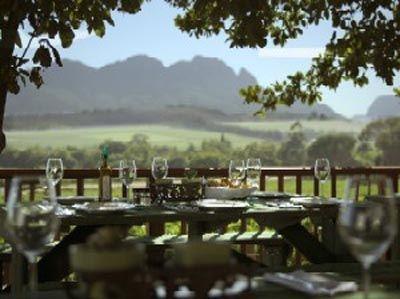 Beyerskloof Wijnboerderij in Stellenbosch Zuid-Afrika