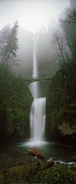 I love this Waterfall .... Jesse was a tiny tot back when you could still walk up to it - Multnomah falls, Oregon.