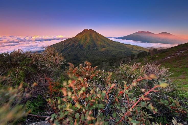 View of Ijen.  Kawah Ijen adalah sebuah danau kawah yang bersifat asam yang berada di puncak Gunung Ijen, Jawa Timur, memiliki tinggi 2368 meter di atas permukaan laut dengan kedalaman danau 200 meter dan luas kawah mencapai 5466 Hektar. Kawah Ijen berada dalam wilayah Cagar Alam Taman Wisata Ijen, Kabupaten Bondowoso, Jawa Timur (Wikipedia).