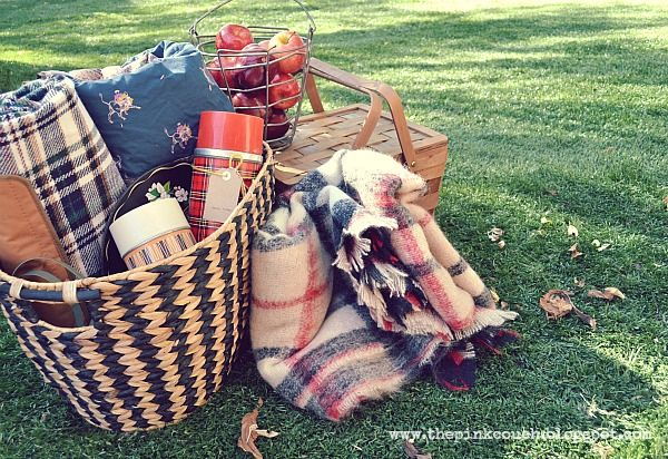 the pink couch: Sweet November: Autumn Picnic