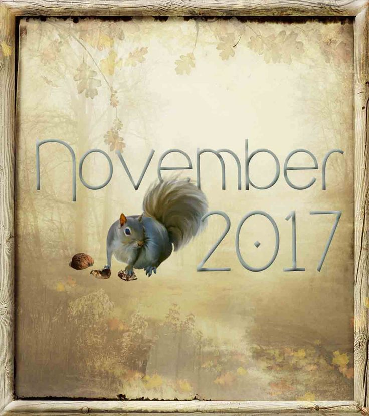 NOVEMBER 2017 Visiting Teaching Message: Your choice from October's Conference