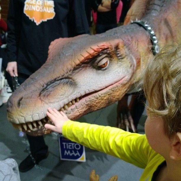 Oulun Tietomaan lemmikki @Ita Wolff #Matka2014 #Oulu #dino #dinosaur #pet http://instagram.com/loma_asuntomessut2014