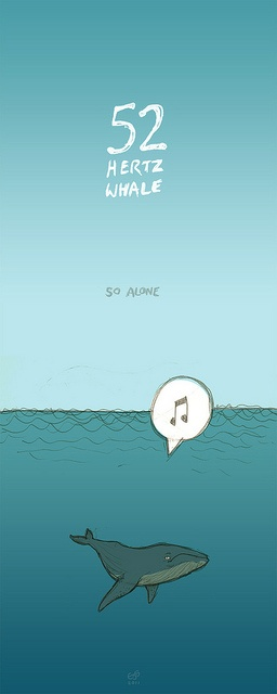 52 Hertz Whale (so alone) by elliotjaystocks, via Flickr
