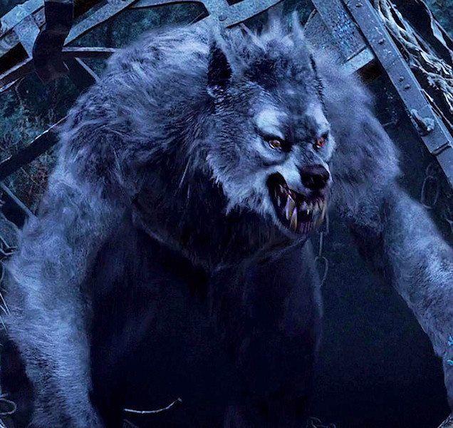 Image result for werewolf